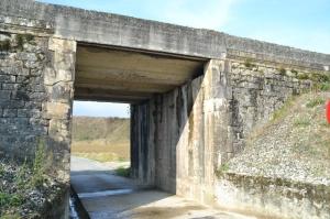 Junto al puente de la carretera a Aldaba, Iza.