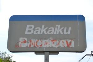 Apeadero de Bakaiku. Descatalogado, no se puede utilizar.